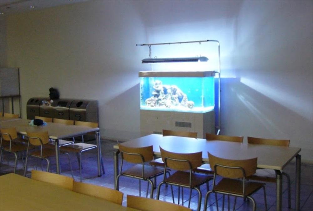 大正大学 120cm海水魚水槽 斜めアップ画像