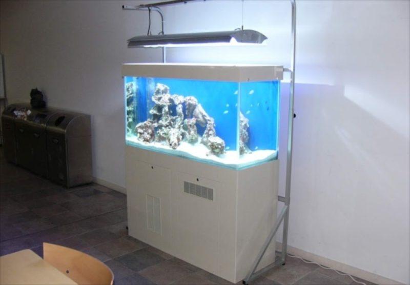 東京都豊島区 大正大学様  120cm海水魚水槽  設置事例 水槽画像3