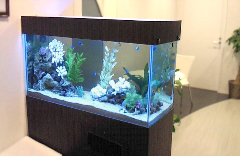 企業様 オフィスの商談スペース 120cm海水魚水槽 レンタル事例 メイン画像