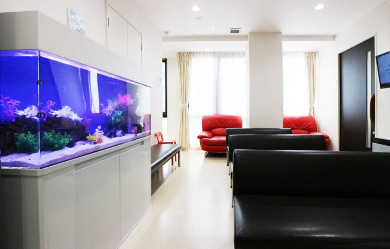 練馬区 皮膚科小児科の待合室 120cm海水魚水槽 リース事例 その後 水槽画像1
