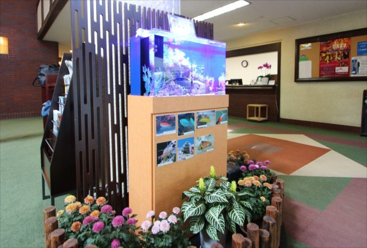 ゴルフ倶楽部 エントランス 60cm海水魚水槽 設置事例 メイン画像
