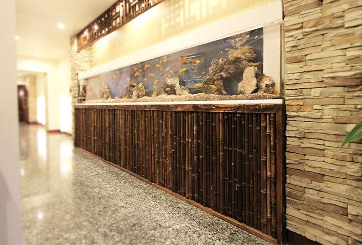 東京都台東区 店舗  420cm埋め込み淡水魚水槽 メンテナンス事例 メイン画像