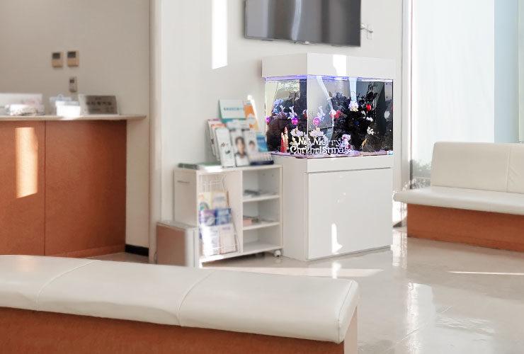 愛知県 眼科クリニックの待合室 90cm海水魚水槽レンタル リニューアル事例 メイン画像