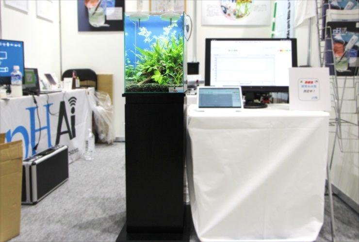 東京ビックサイト 短期イベント 30cm淡水魚水槽 短期水槽レンタル事例 メイン画像