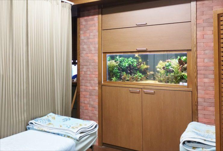 病院 120cm淡水魚水槽 リセット・メンテナンス事例 メイン画像
