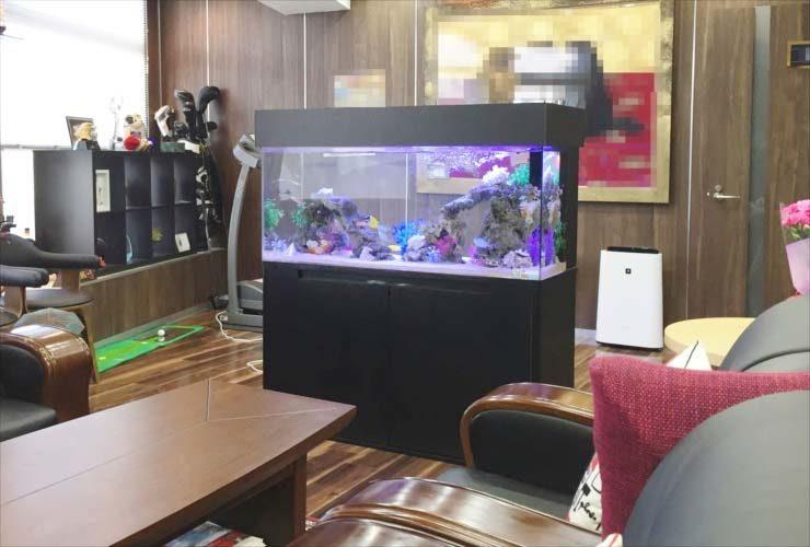 新宿区 オフィス 社長室 120cm水槽 海水アクアリウム事例 メイン画像