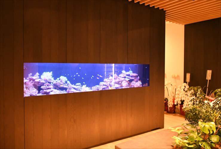 中央区 日本橋 オフィス 大型サンゴ水槽 販売・設置事例 水槽画像1