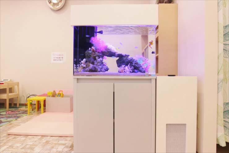 立川市 クリニック 待合室 60cm海水魚水槽 設置事例 メイン画像
