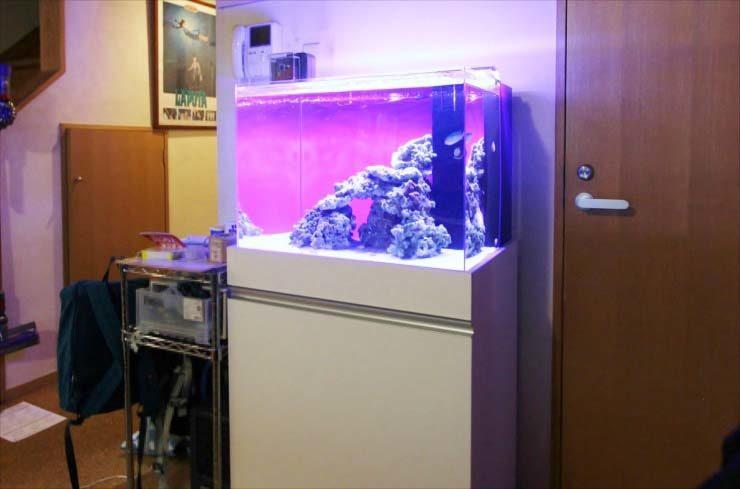 町田市 個人宅 リビングに設置 60cm海水アクアリウム 導入事例 メイン画像
