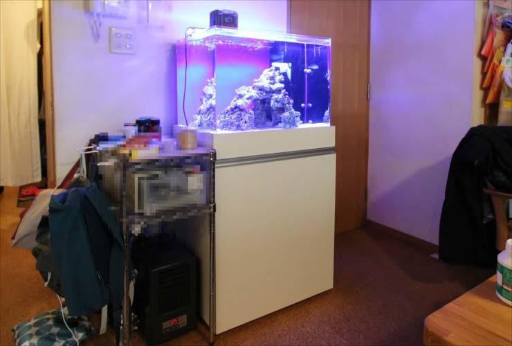 町田市 個人宅 リビングに設置 60cm海水アクアリウム 導入事例