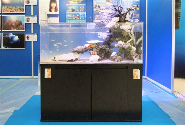 サンシャイン イベント 展示水槽