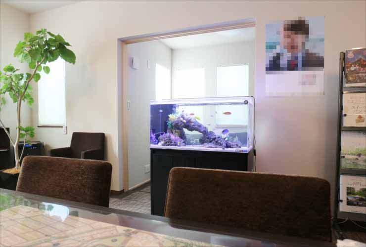 神奈川県川崎市 オフィスに設置 両面仕様 90cm海水魚水槽事例 水槽画像3