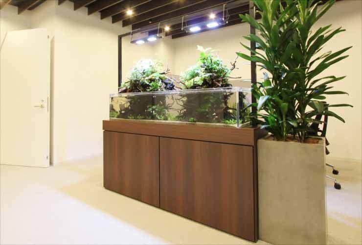 日本橋 オフィスのエントランス 150cmアクアテラリウム 販売・設置事例
