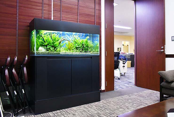 埼玉県 さいたま市 オフィス 大型水槽リニューアル・メンテナンス事例 メイン画像