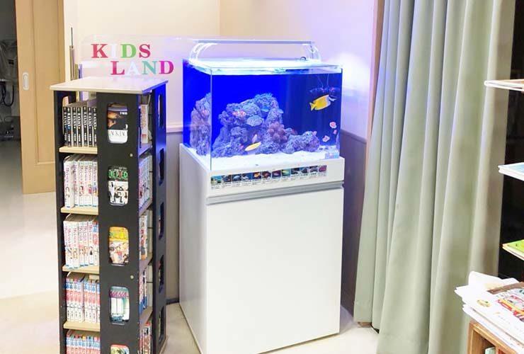 横浜 眼科クリニックの待合室 60cm海水魚水槽 リニューアル事例 メイン画像