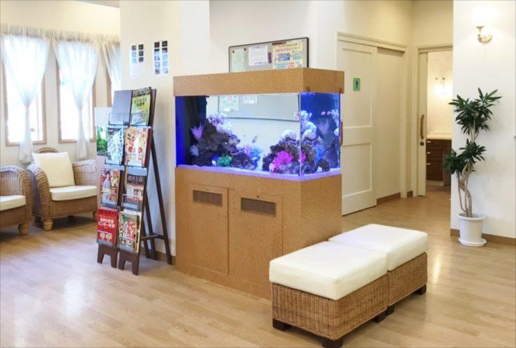 オアシス脳神経クリニック様 水槽入替 120cm海水魚水槽 リニューアル事例 メイン画像