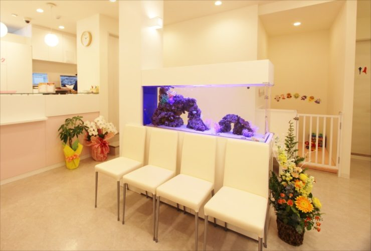 立川市 歯科クリニックの待合室 大型海水アクアリウム 設置事例 水槽画像1