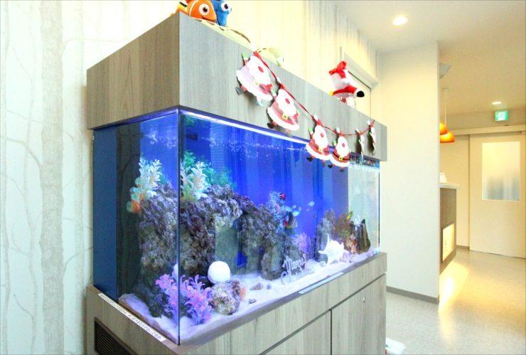 千葉県 歯科クリニックに設置 120cm海水魚水槽 クリスマスレイアウト事例 水槽画像1