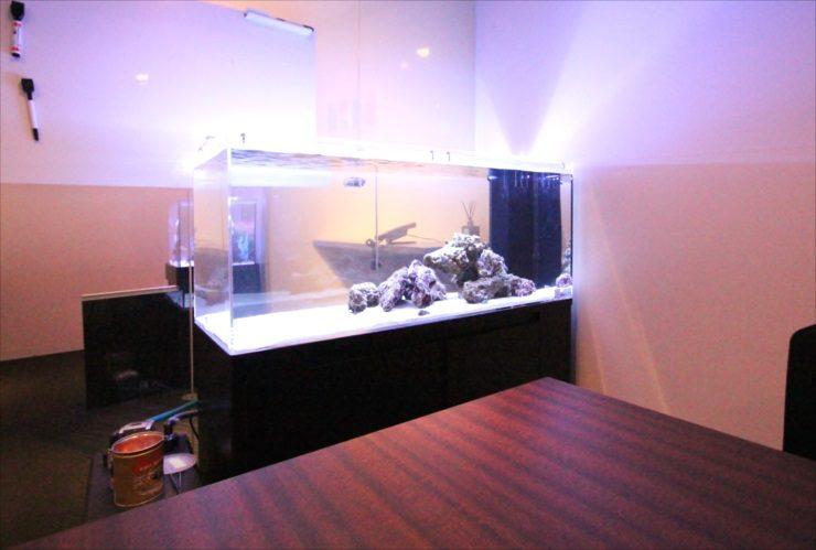 オフィスに設置 120cm海水魚水槽 かわいいハリセンボン リニューアル事例 メイン画像