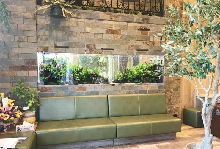 薬局の待合室 壁埋め込み型 大型淡水魚水槽 設置事例 メイン画像