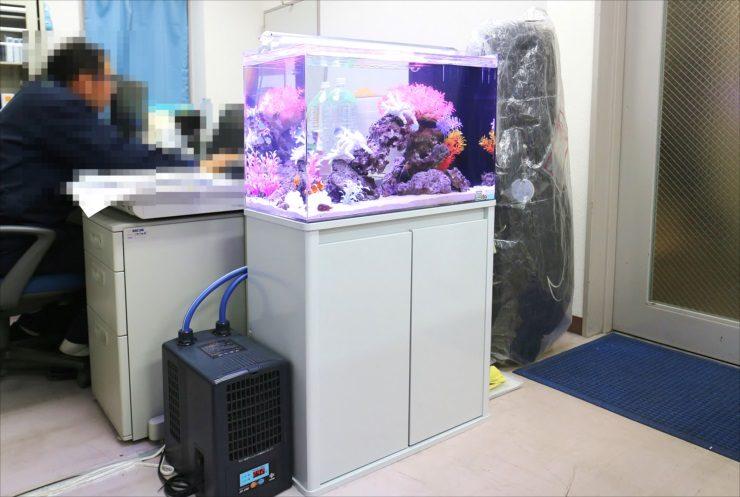世田谷区 オフィス内に設置 60cm海水魚水槽 設置事例