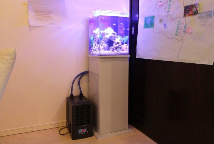 品川区 個人宅のリビング 30cm海水アクアリウム 設置事例 メイン画像