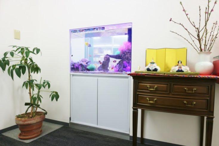 港区 会計事務所に設置 90cm海水魚水槽 リニューアル事例 メイン画像