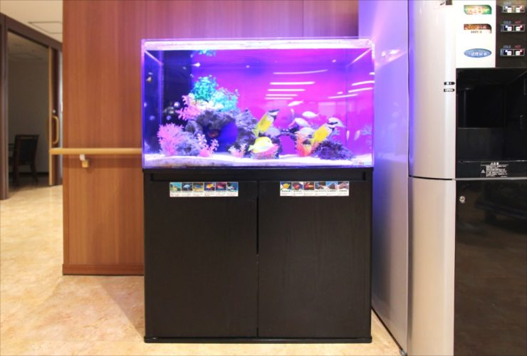 練馬区 特別養護老人ホーム 90cm海水魚水槽 設置事例