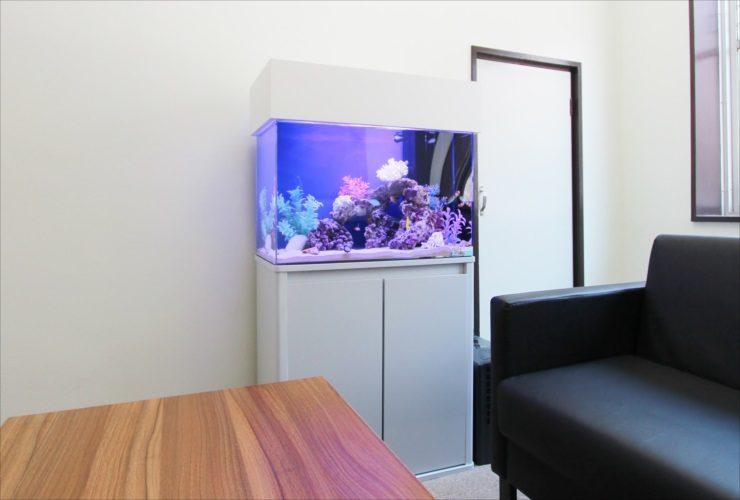 新宿区オフィス 応接室に設置 60cm海水魚水槽事例 メイン画像