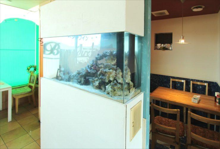 大田区 飲食店 120cm海水魚水槽 スポットメンテナンス事例 水槽画像1