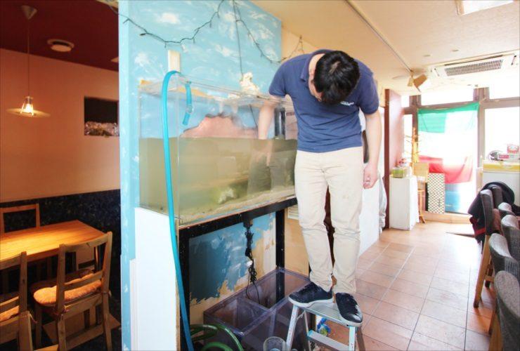 大田区 飲食店 120cm海水魚水槽 スポットメンテナンス事例 水槽画像2