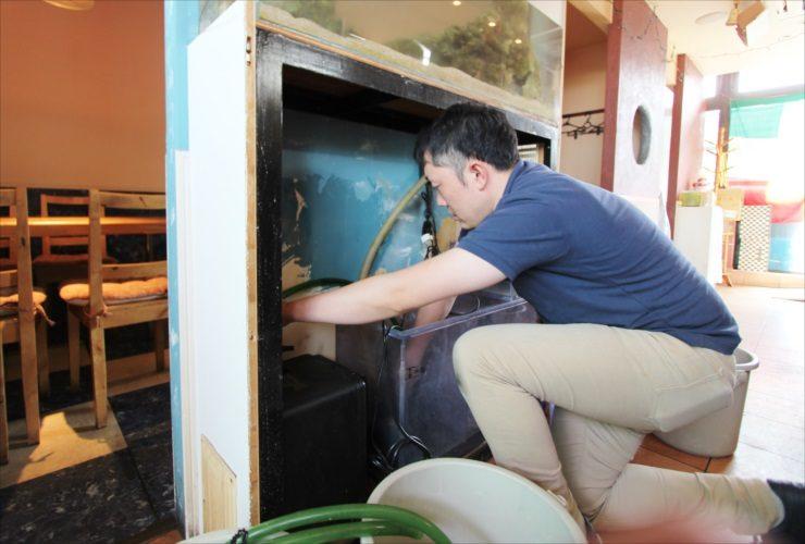 大田区 飲食店 120cm海水魚水槽 スポットメンテナンス事例 水槽画像3