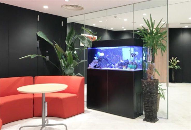 千代田区 オフィスのエントランスに設置 120cm海水魚水槽リース事例 現在の様子 メイン画像