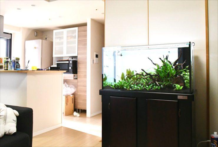 個人宅・住宅の水槽レンタル