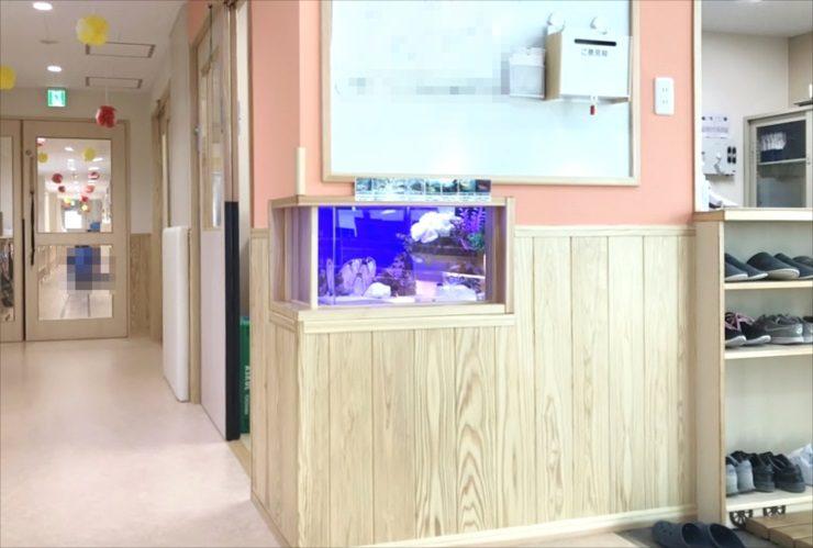 保育園 壁埋め込み水槽 水槽レンタルサービス