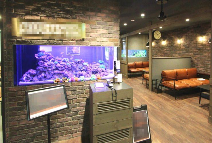 渋谷区 オフィスのエントランス 大型海水魚・サンゴ水槽 設置事例