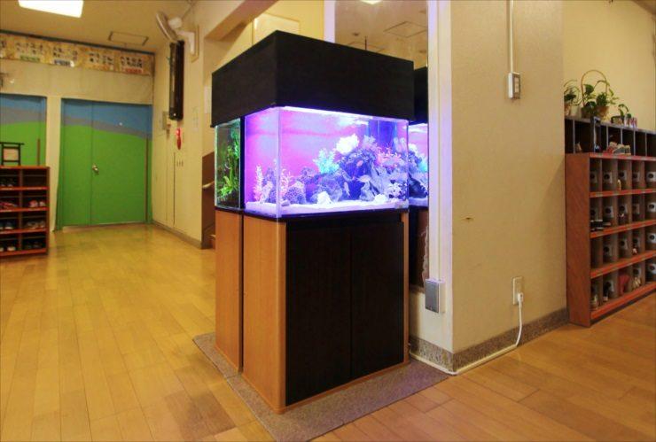 杉並区 保育園のエントランス 60cm海水魚・淡水魚 水槽設置事例 メイン画像