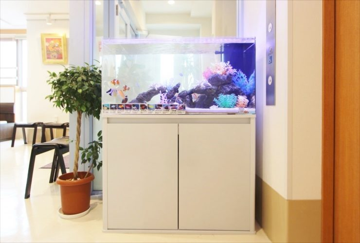 調布市 ファミリークリニック 待合室に設置 90cm海水魚水槽事例 メイン画像