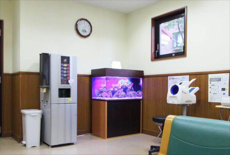 青梅市 医院の待合室 90cm海水魚水槽 設置事例 水槽画像3