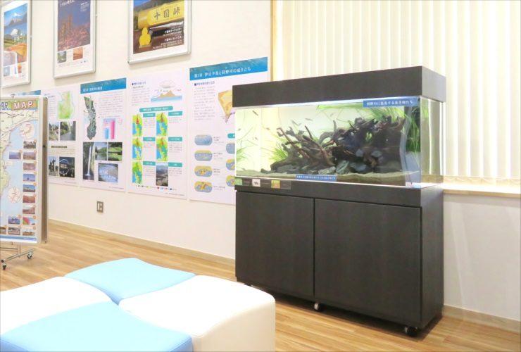 水槽レンタル事例 学校 施設 水槽