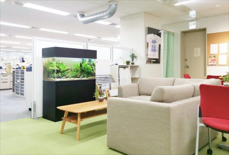 オフィス事務所 ミーティングスペース 90cm淡水魚水槽 設置事例 メイン画像