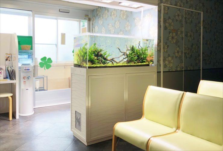横浜 眼科クリニックの待合室 120cm淡水魚水槽 設置事例 メイン画像