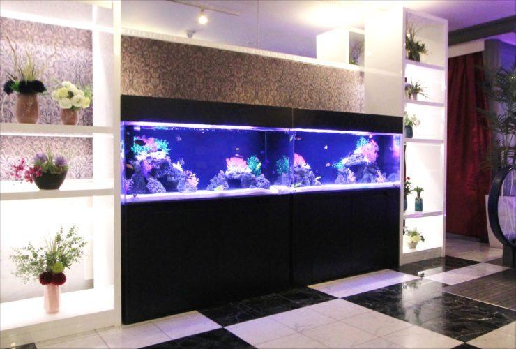 神奈川県厚木市 ホテルの受付フロア 120cm海水魚水槽 設置事例 メイン画像