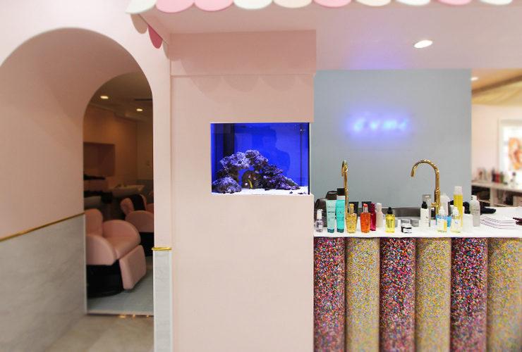 神奈川県横浜市 美容室 60cm海水魚水槽 設置事例 メイン画像