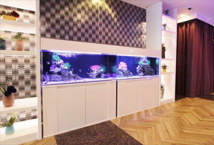 神奈川県厚木市 ホテルのエントランス 120cm海水魚水槽 設置事例 メイン画像