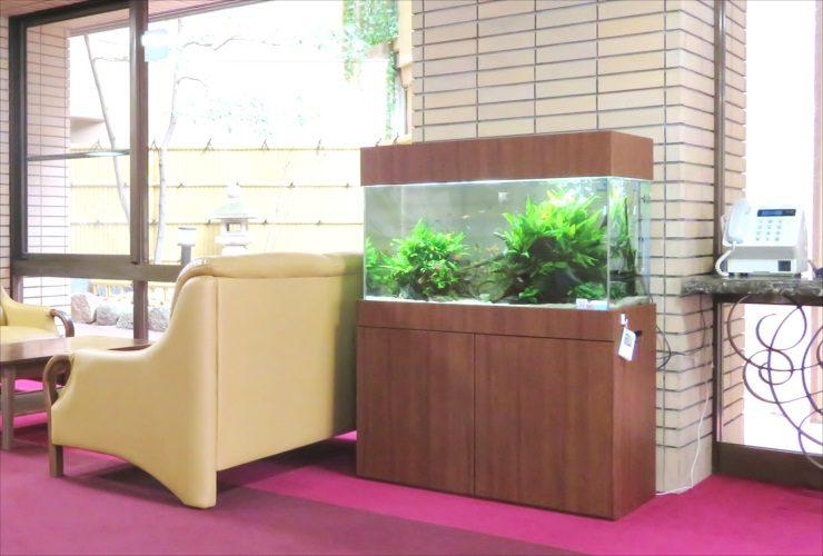 老人ホームのエントランスフロア 90cm淡水魚水槽 設置事例 メイン画像