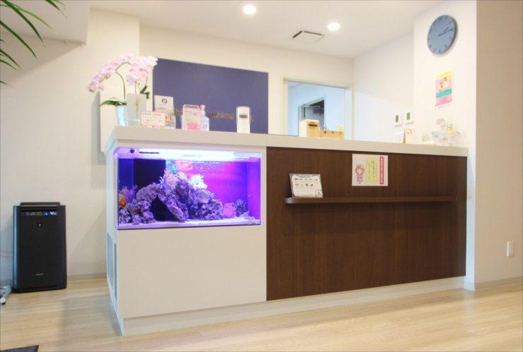 神奈川県 内科クリニックの待合室 80cm海水魚水槽 設置事例 メイン画像