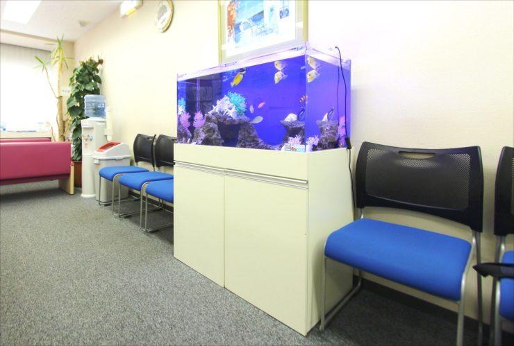 渋谷区 クリニックの待合室 90cm海水魚水槽 その後 メイン画像