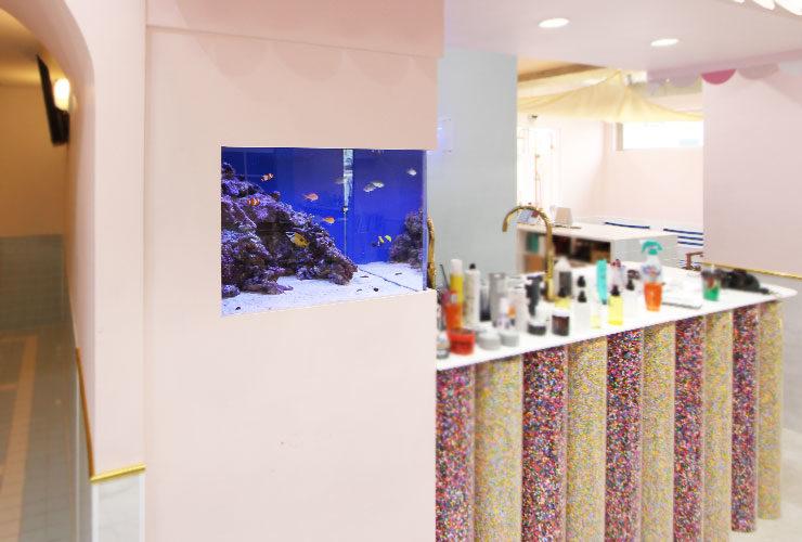 神奈川県横浜市 美容室 60cm海水魚水槽 水槽変更事例 メイン画像