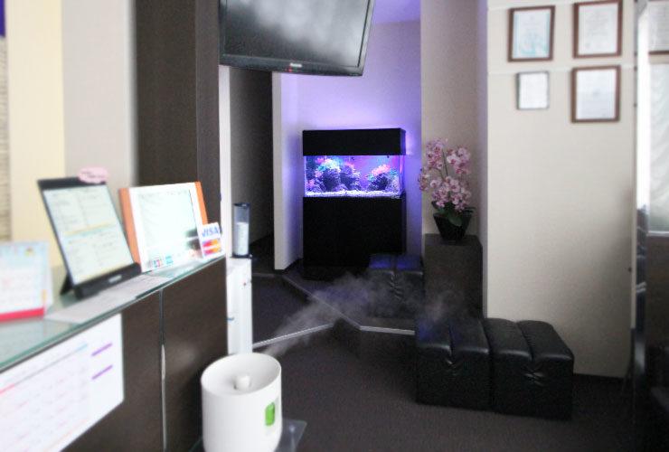 神奈川県横浜市 歯科クリニック  90cm海水魚水槽 設置・メンテナンス事例 水槽画像3